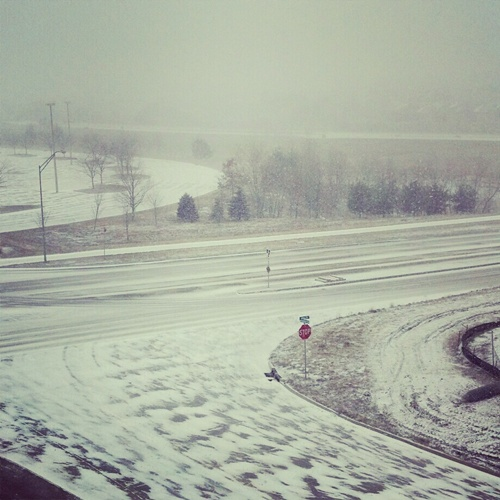 snow storm Q